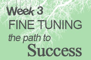 Fine Tuning the Path to Success by Samantha Meeker