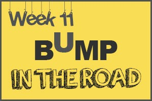 Bump in the Road by Samantha Meeker